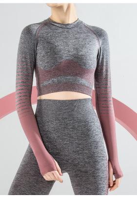 Seamless Long-sleeved Quick-drying Jacket NSLUT60164
