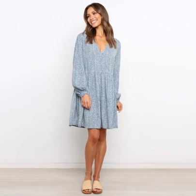 Women's Summer Loose Polka Dot V-neck Print Short Dress Wholesale Women's Clothing Nihaostyles NSXMI67968