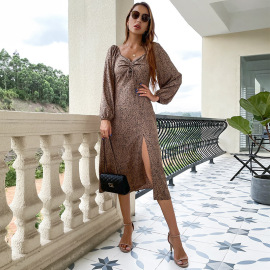 Women's Leopard Print V-neck Pleated Puff Sleeve Dress Nihaostyles Clothing Wholesale NSDMB73698