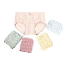Mesh Seamless Panties Nihaostyles Wholesale Clothing Vendor NSLSD74249