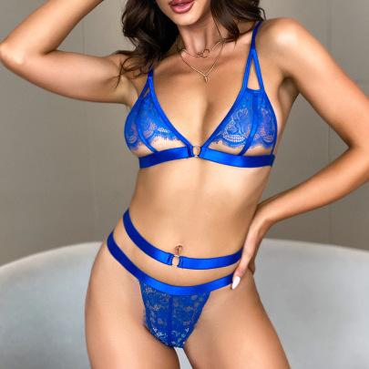 Women's Mesh Lace Underwear Set Nihaostyles Clothing Wholesale NSRBL79270