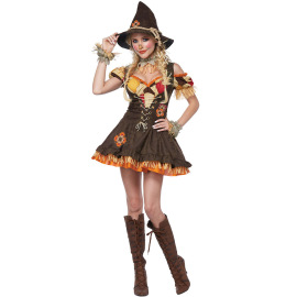 Witch Costume The Wizard Of Oz Cosplay Costume Nihaostyles Wholesale Halloween Costumes NSMRP79314