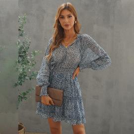 Women's Printed Lantern Sleeve Dress Nihaostyles Clothing Wholesale NSQSY78013
